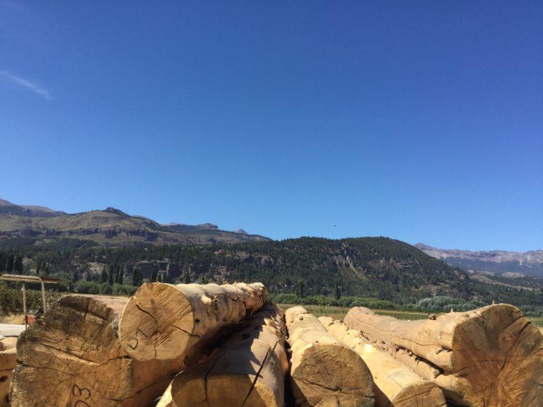 wir haben soeben die Fundamentplatte gegossen und starten nun mit dem Holzzuschnitt