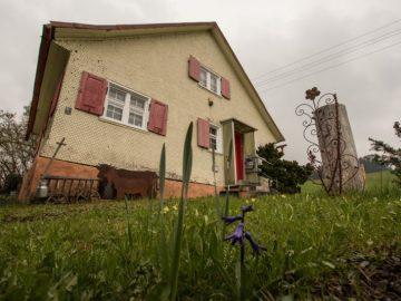 ein Haus, das sich durch seinen Baustil und seine Farbgebung harmonisch in die Umgebung einfügt